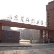 东营蓝海职业学校