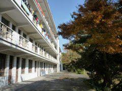 台州护士学校「中专」