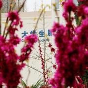徐州生物工程学院